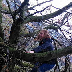 Lucie climbing a tree