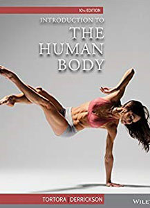 The human body textbook