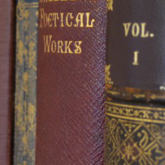 Four 19th century books together on a shelf