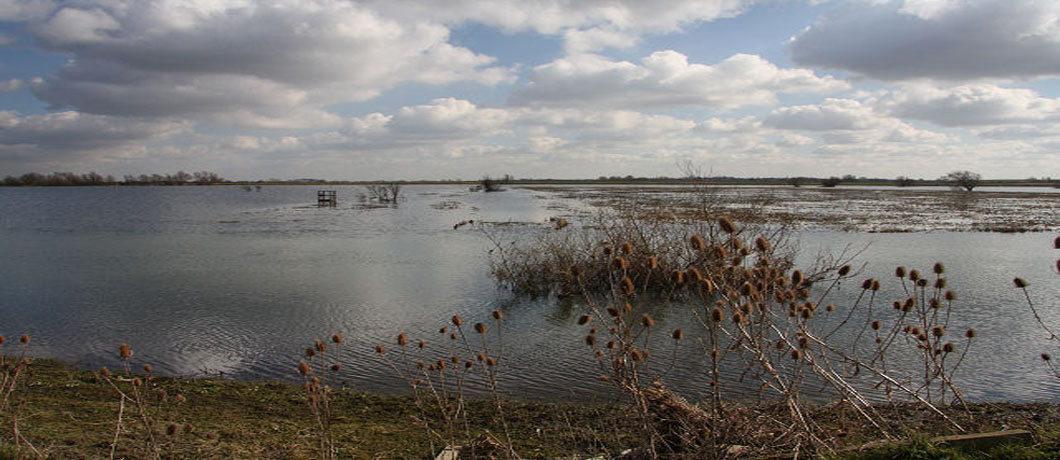 Image of Ouse Washes, credit Bob Jones https://commons.wikimedia.org/w/index.php?curid=13906026