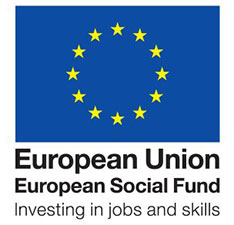 European Social Fund: Investing in jobs and skills logo