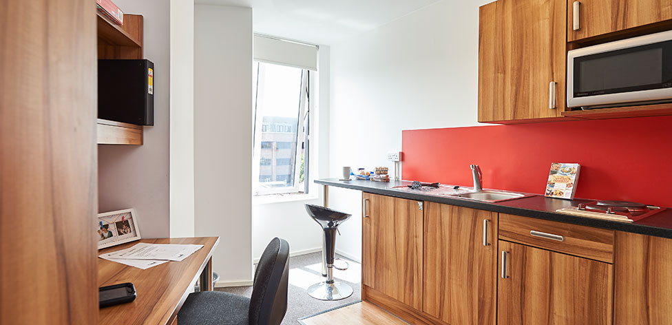 Kitchenette in Studio Plus flat