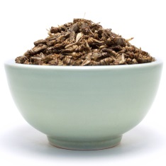 Bowl of crickets