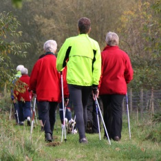 Nordic walking group