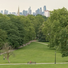 Primrose Hill in London