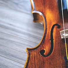 Close-up photo of a violin