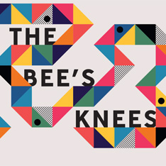 Logo design for the 2017 Cambridge School of Art Degree Show, The Bees Knees.  Colourful   geometric shapes in a curved line with the words The Bees Knees on top