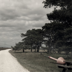 a still taken from a film - a landscape shot of a countryside trail, with woods and a bench to the right