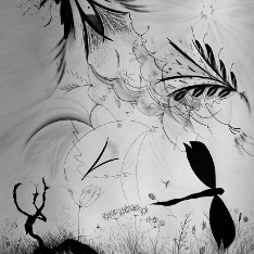 Black and white drawing of plants and a dragonfly