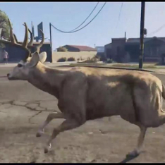 San Andreas Deer Cam, a CGI-rendered deer running through a city