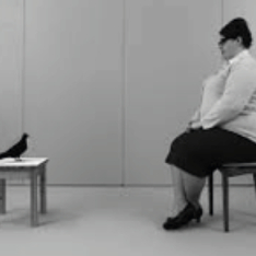 Photo of a woman in a chair looking at a bird sitting on a table