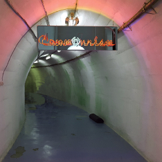 A tunnel with a neon sign reading