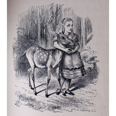 John Tenniel woodcut illustration for Lewis Carroll's 'Through the Looking Glass and What Alice Found There' (London: Macmillan, 1871 [post-dated 1872]), photographed by Eugene Giddens from a copy of the first edition