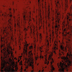 A red, bloodied pattern. Taken from the poster for Blood wedding.