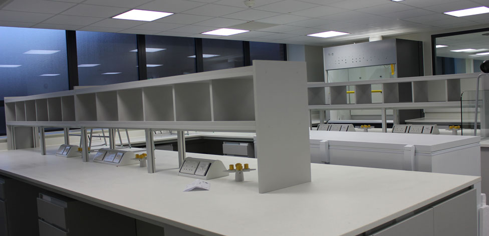 Molecular Ecology Lab 2 - to be completed