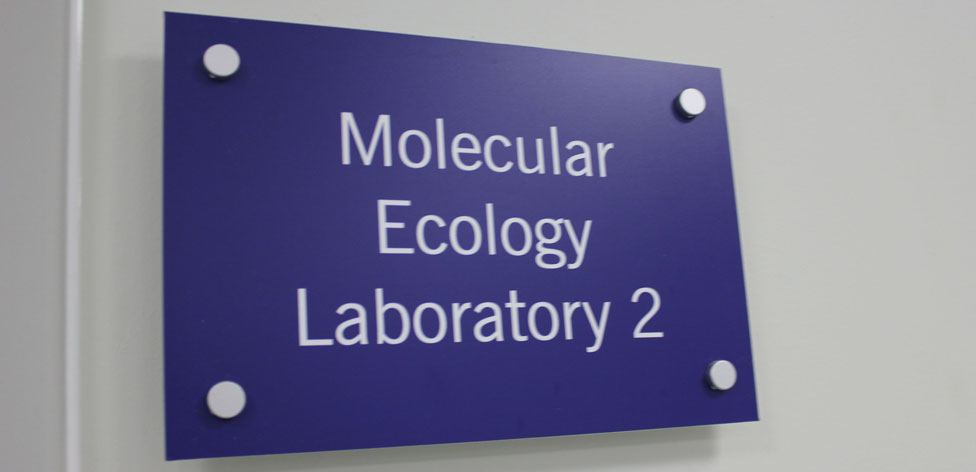 Molecular Ecology Lab 2