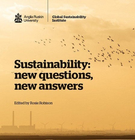 Sustainability: new questions, new answers front cover