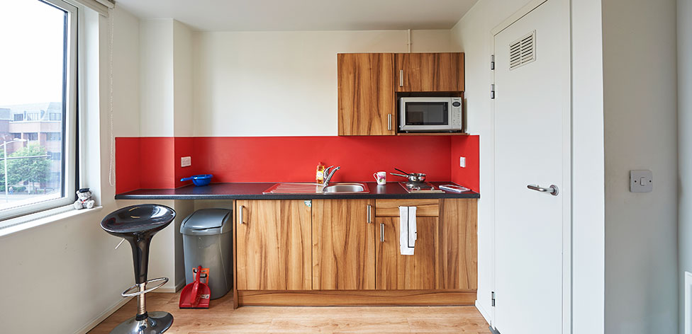 Kitchenette area in a Studio Premium flat