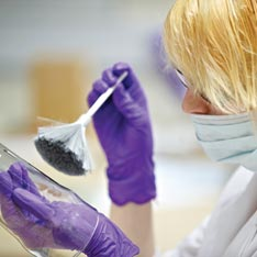Forensic Science student dusting for fingerprints