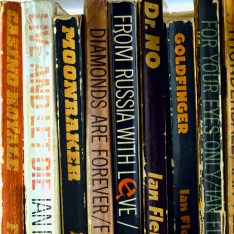 A selection of James Bond novels including Casino Royale, Love and Let Die, Moonraker, Diamonds are Forever, Dr No, Goldfinger, and For Your Eyes Only.