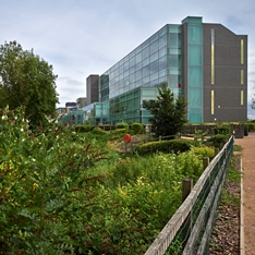 View from Millpond on Chelmsford campus